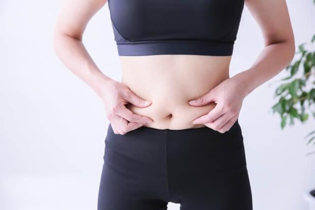 太った女性のイメージ画像